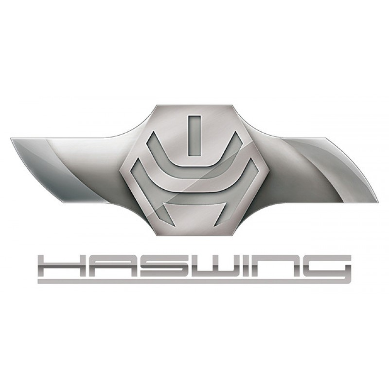 Haswing (Китай)