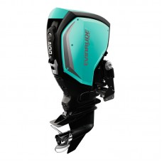 Лодочный 2-х тактный мотор Evinrude C 200 XC(Выбор комплекта поставки)